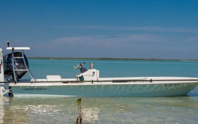 Two Georges Now a Mitzi Skiffs Dealer